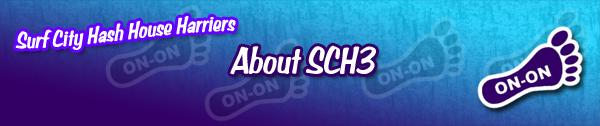 About SCH3