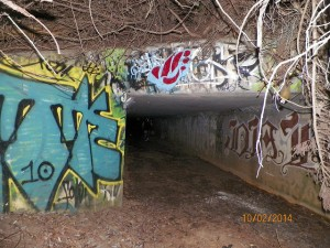 765tunnel2