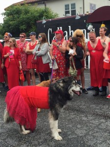 Even poon doggy was dressed to impress in red!
