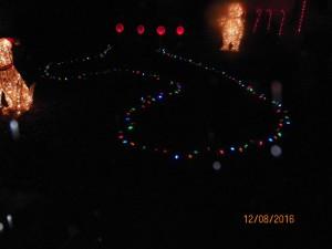 Festive dick lights!